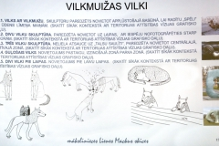 Vilkm-apspr2