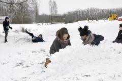 Sniega-d